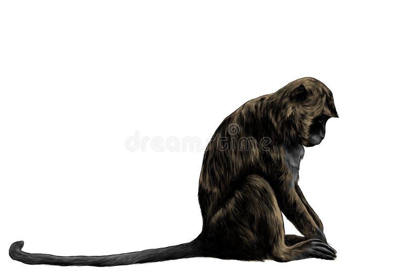 Macaco que senta-se lateralmente com sua cabeça para baixo ilustração stock