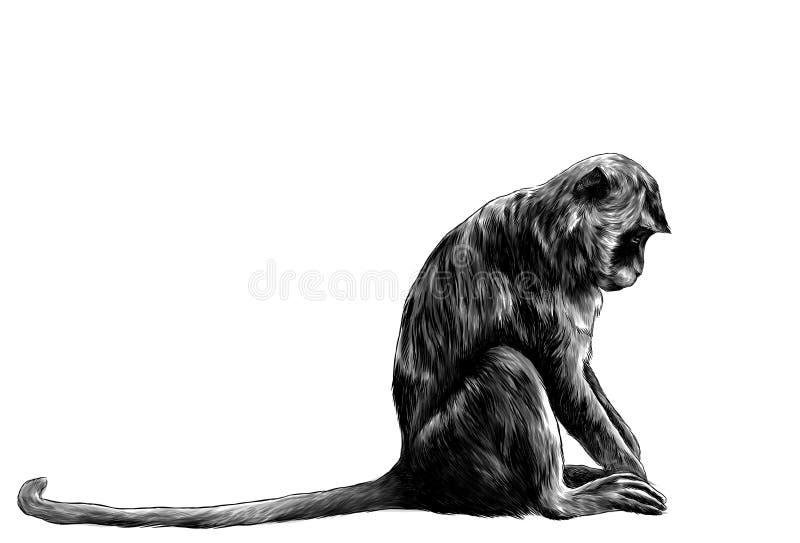 Macaco que senta-se lateralmente com sua cabeça para baixo ilustração do vetor