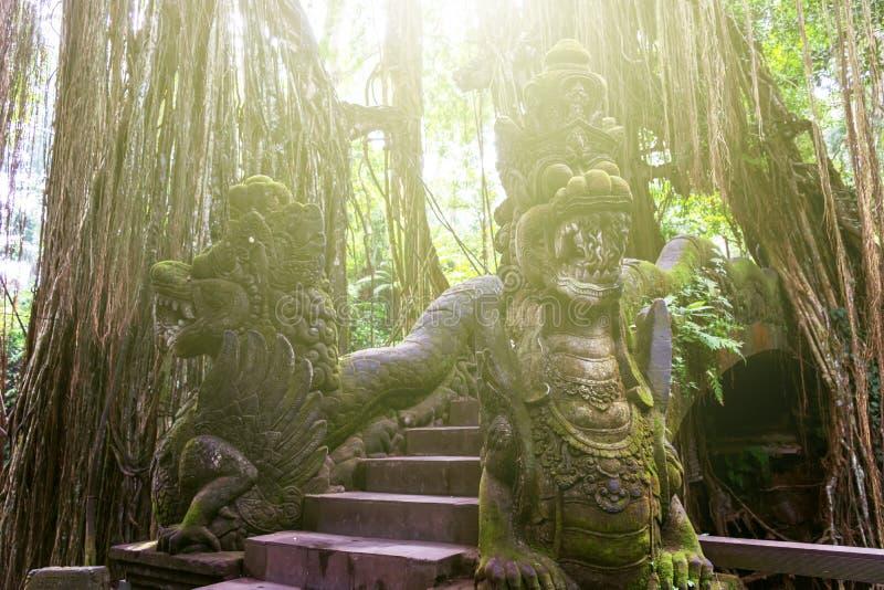 Macaco sagrado Forest Sanctuary fotos de stock royalty free