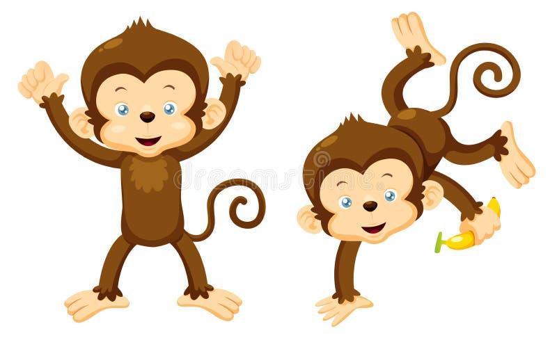 Macacos ilustração do vetor