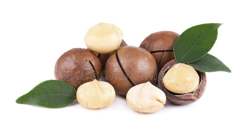 Macadamia καρύδια με τα φύλλα, που απομονώνονται στο άσπρο υπόβαθρο Ξεφλουδισμένο και unshelled macadamia στοκ εικόνα με δικαίωμα ελεύθερης χρήσης