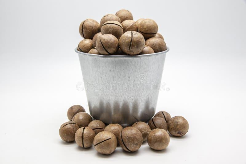 Macadamia καρύδια σε έναν κάδο κασσίτερου στο άσπρο υπόβαθρο στοκ εικόνες