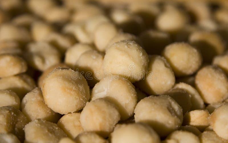 macadamia καρύδια στοκ φωτογραφία