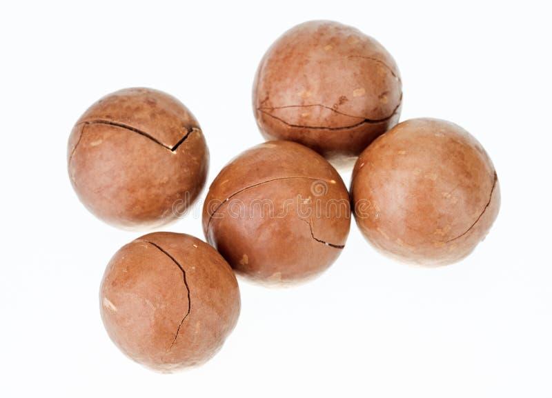 macadamia καρύδια unshelled στοκ φωτογραφία με δικαίωμα ελεύθερης χρήσης