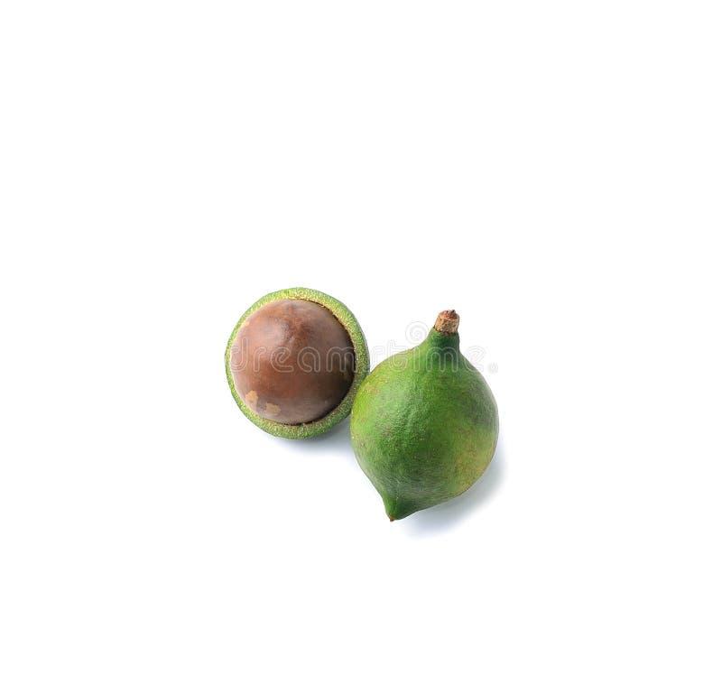 Macadamia met witte achtergrond stock foto's