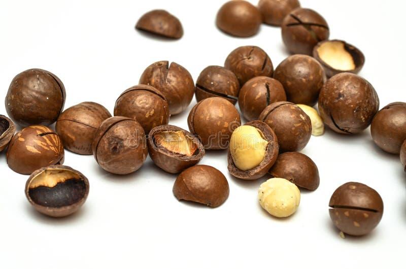 Macadamia noten royalty-vrije stock afbeeldingen