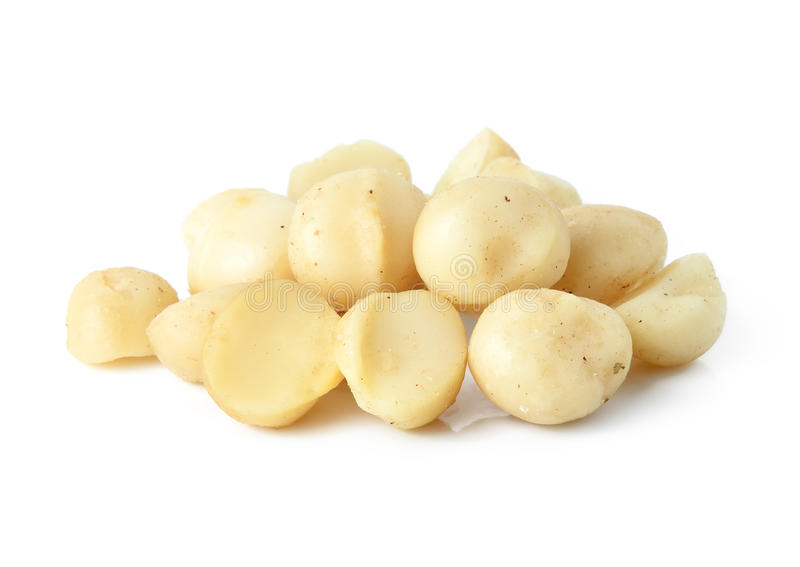 Macadamia noten royalty-vrije stock fotografie