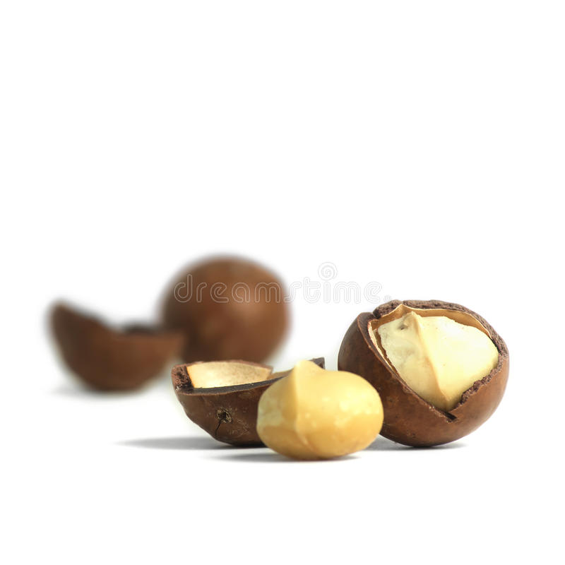 Macadamia noten royalty-vrije stock foto