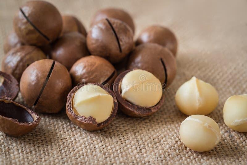 Macadamia noten op jute stock foto