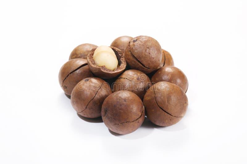 Download Macadamia Nut Royalty Free Stock Photo - Image: 27636615