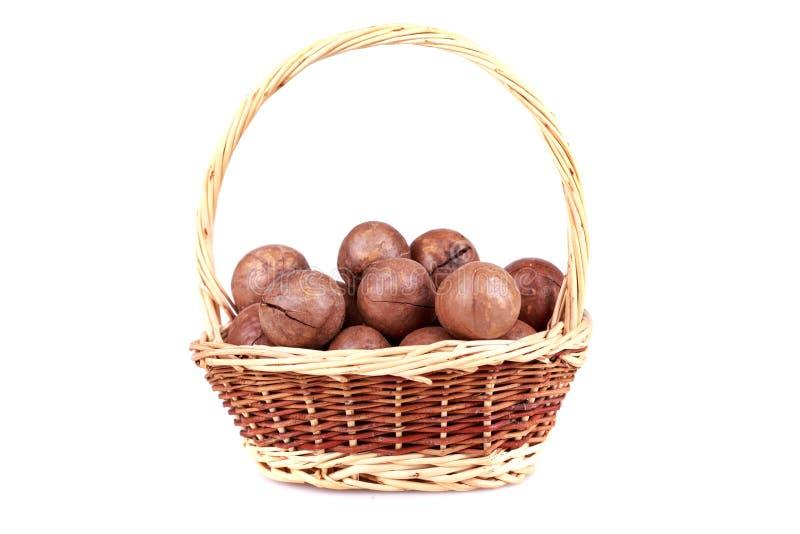 Download Macadamia nuts stock photo. Image of heap, fruit, antioxidant - 36227632