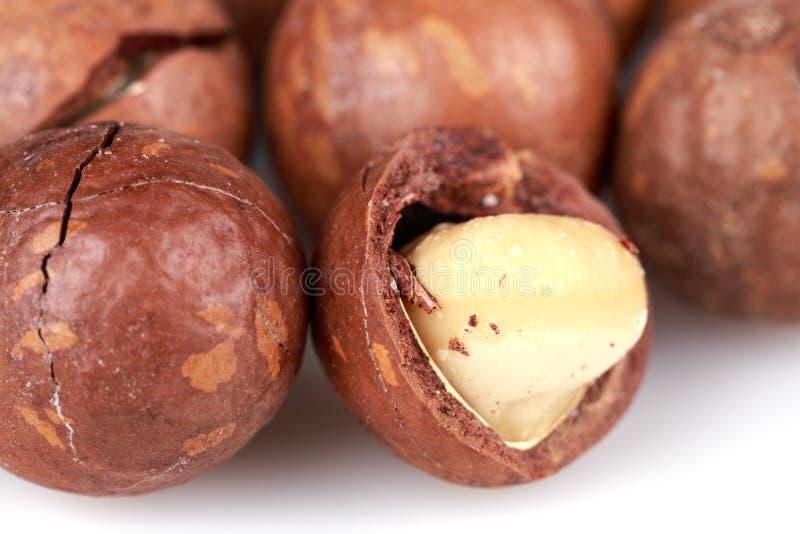 Macadamia Nuts Royalty Free Stock Photography