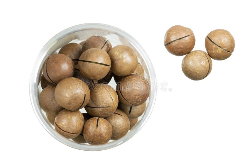 Macadamia nuts isolated on white royalty free stock photography