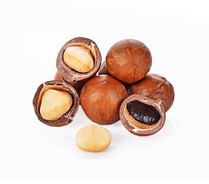 Macadamia nuts isolated on whited background. Macadamia nuts broken isolated on whited background royalty free stock photo