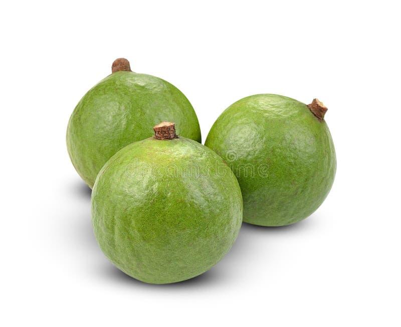 Macadamia nuts on white background royalty free stock photo