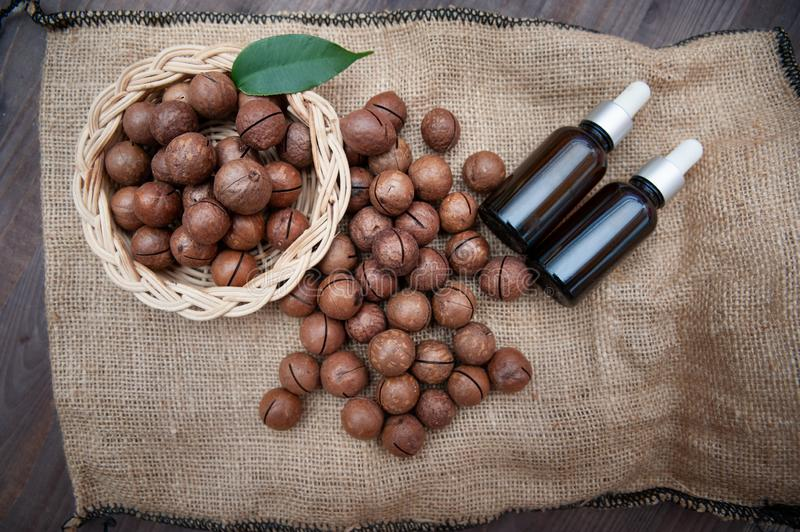 Macadamia oil in bottles and macadamia nuts, flat lay, vintage rustic style .  Bio, organic , nature cosmetics concept royalty free stock photo