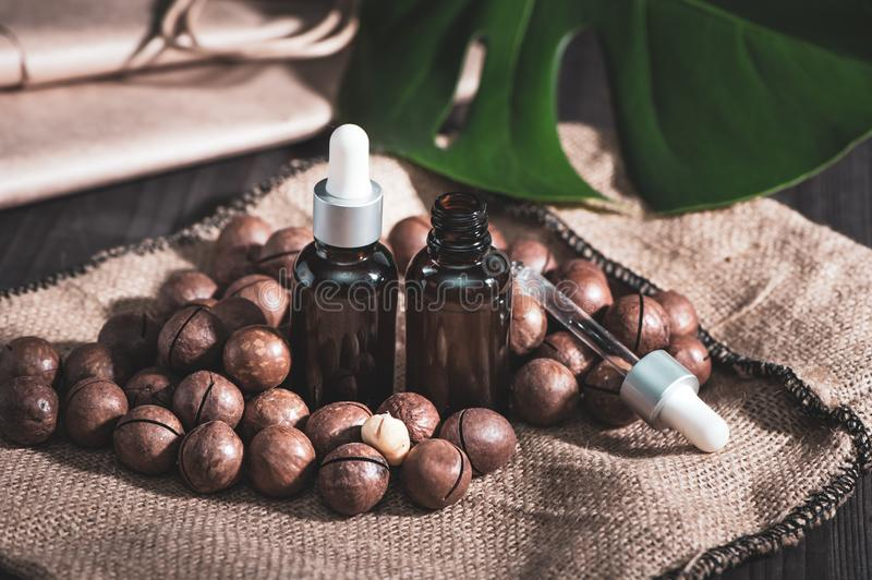 Macadamia oil in bottles and macadamia nuts ,  vintage rustic style .  Bio, organic , nature cosmetics concept royalty free stock photography