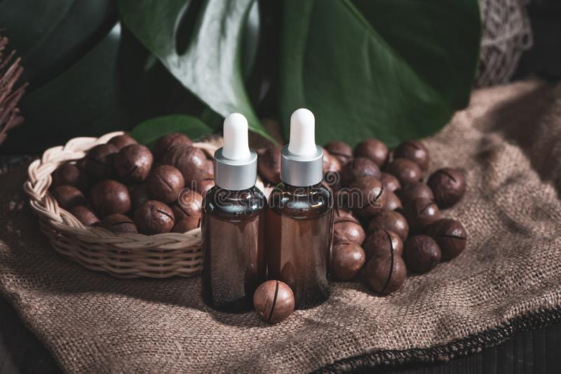 Macadamia oil in bottles and macadamia nuts ,  vintage rustic style .  Bio, organic , nature cosmetics concept stock photo