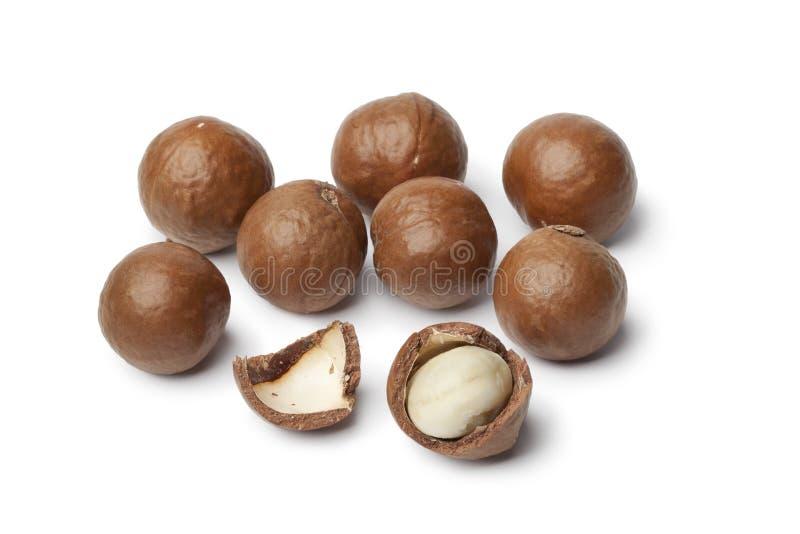 Macadamiamuttern stockbilder