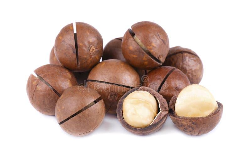 Macadamiamuttrar som isoleras på vit bakgrund Beskjuten och unshelled macadamia arkivbilder