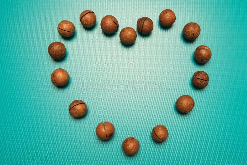 Macadamias logotyp på Alla hjärtans dag Hjärta av nötter i blå bakgrund arkivfoton
