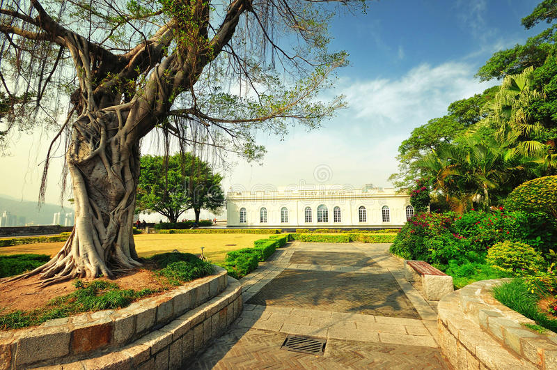 Macao museum royaltyfri bild