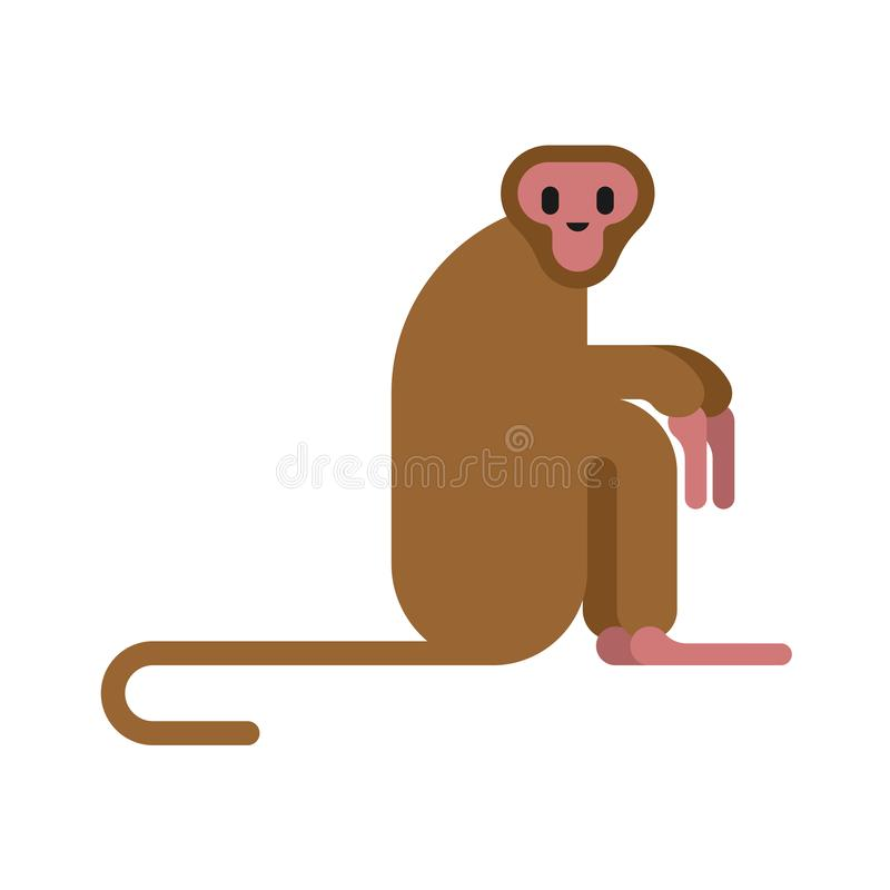 Macaque monkey isolated. Animal mammal wildlife vector.  royalty free illustration