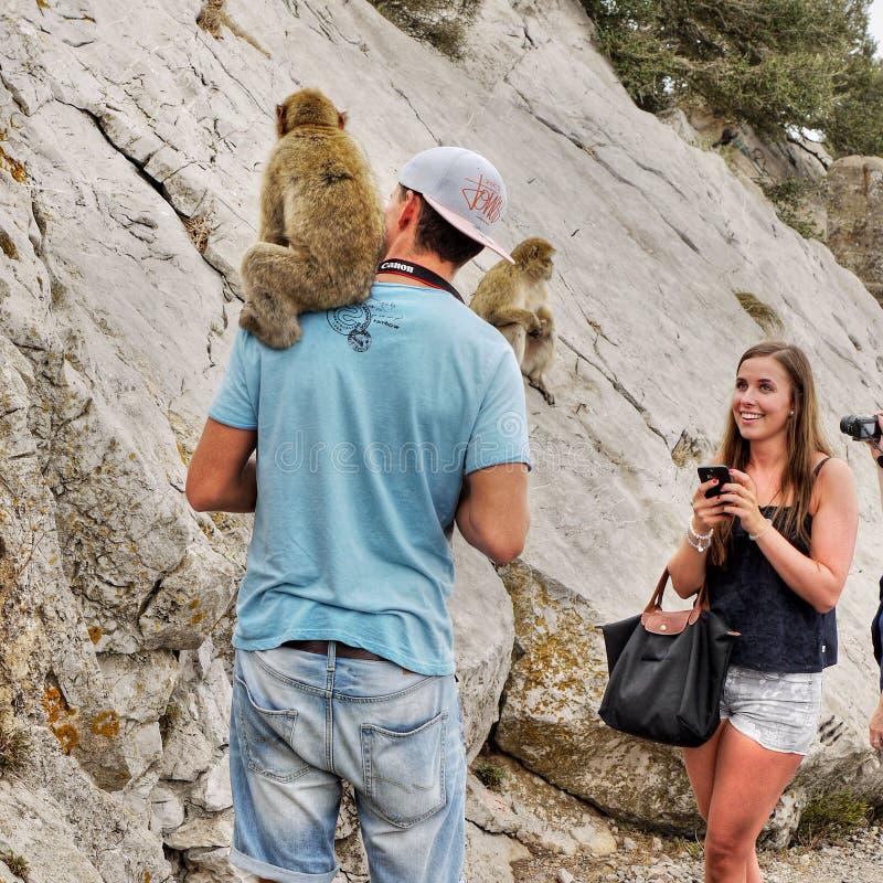 Macaques et touristes, roche du Gibraltar photographie stock