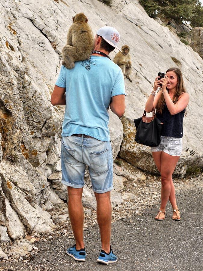Macaques et touristes, roche du Gibraltar images libres de droits
