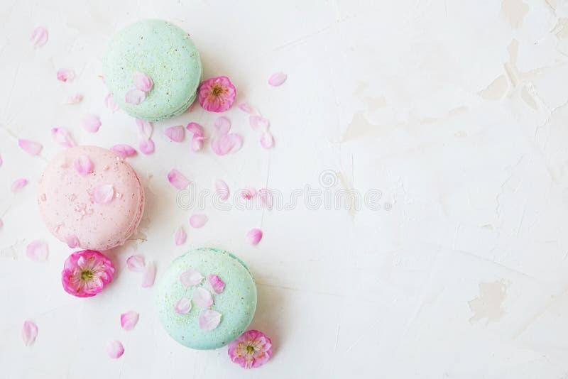 Macaron o il coockie francese del maccherone su bianco strutturato con la molla sakura fiorisce, colori pastelli immagini stock libere da diritti
