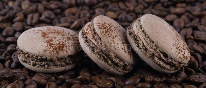 Macaron três sabores do café em grões marrons da goma-arábica foto de stock