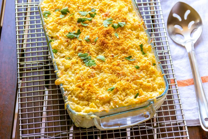 Macaroni and cheese in a baking tray royalty free stock image
