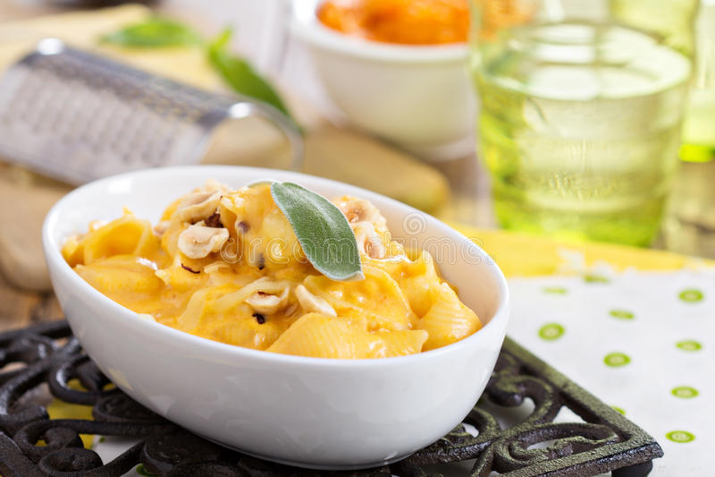 Macaronis au fromage avec la courge de butternut images libres de droits