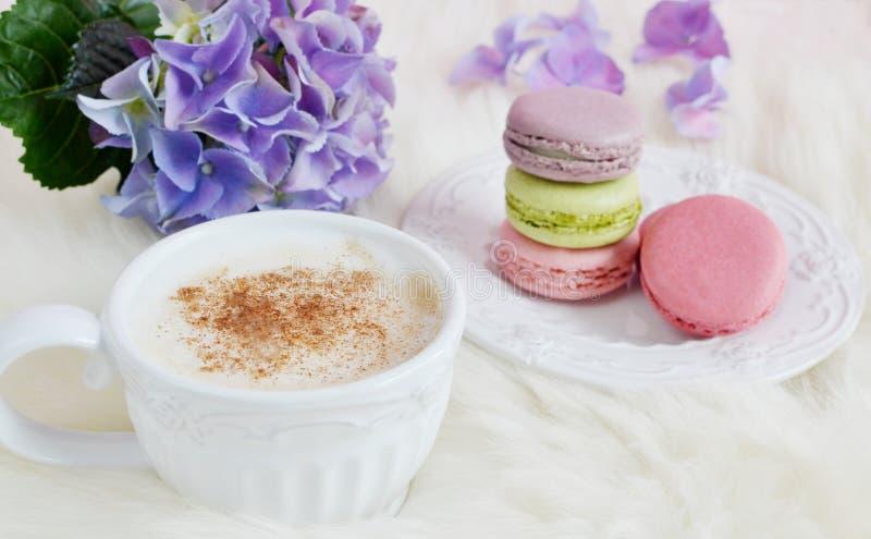 Macarons coloridos franceses fotografia de stock
