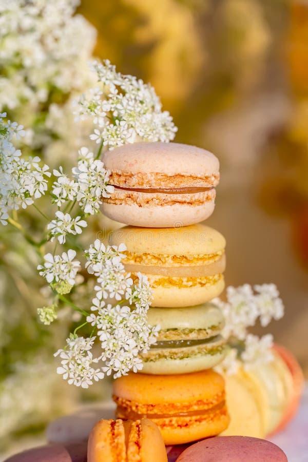Macarons dei dolci e fiori bianchi del prato nella sera di estate nel giardino immagine stock libera da diritti