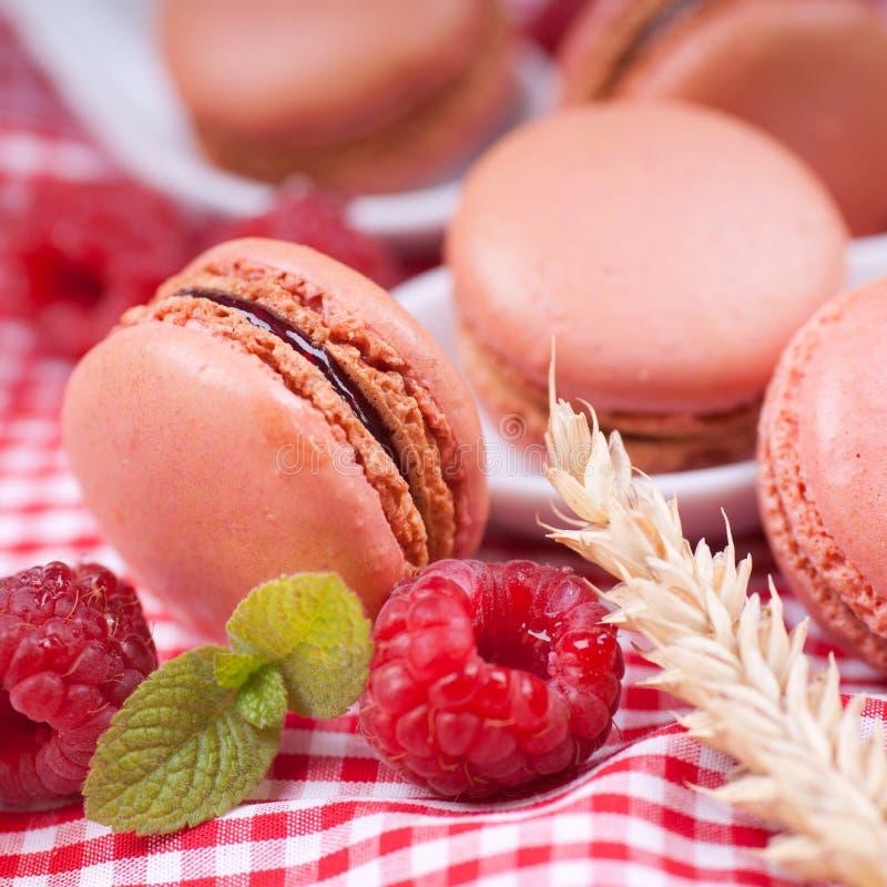 Macarons, framboises photos stock