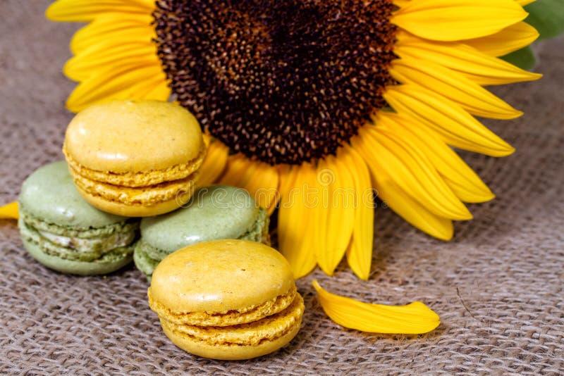 Macarons franceses imagem de stock royalty free