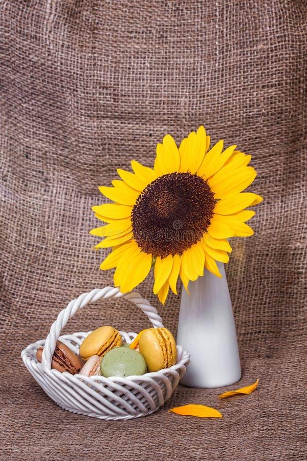 Macarons franceses foto de stock royalty free