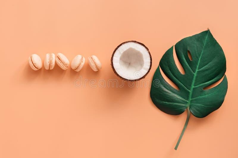 Macarons, kokosnöt och monsterablad i rad på en pastellfärgad rosa bakgrund Id?rik orientering B?sta sikt, lekmanna- l?genhet, ko royaltyfri fotografi