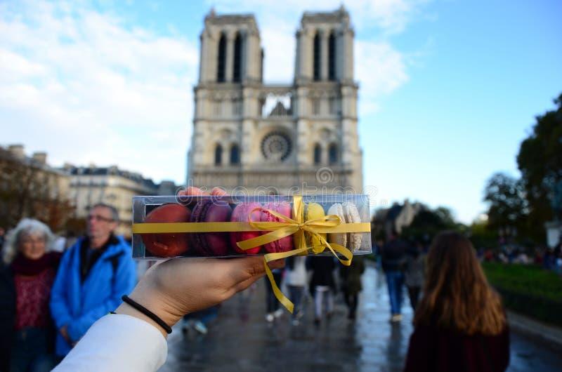 Macarons & Notre Dame Paris Sunny Day royalty-vrije stock afbeeldingen