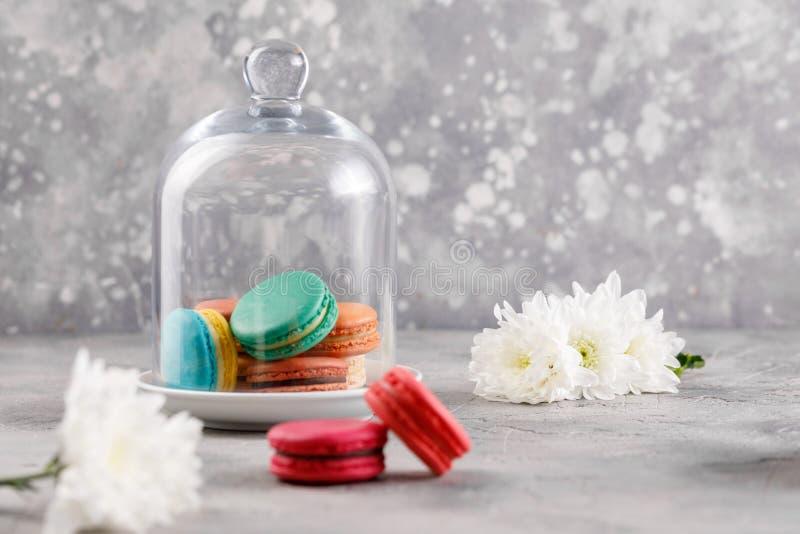 Macarons sous un dôme en verre sur un fond gris et deux macarons roses avec des fleurs de chrysanthème dans le premier plan sensi photographie stock libre de droits