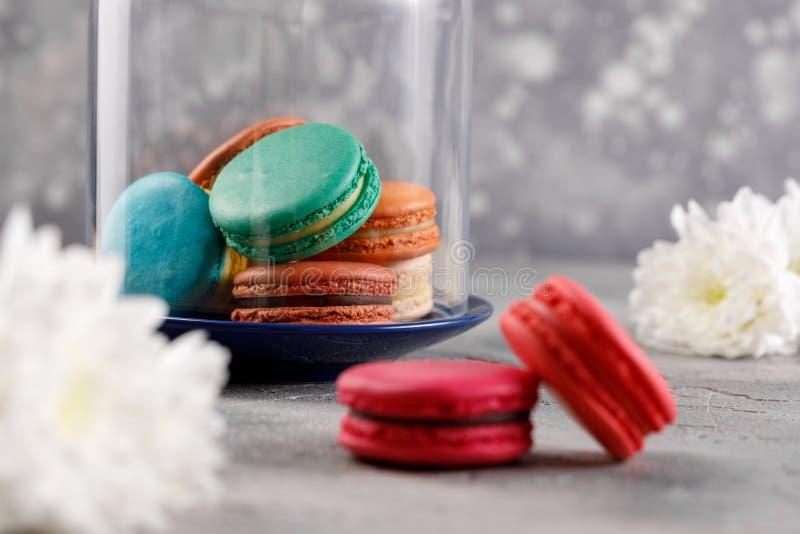 Macarons sous un dôme en verre sur un fond gris et deux macarons roses dans le premier plan Macarons sensibles de macarons image stock