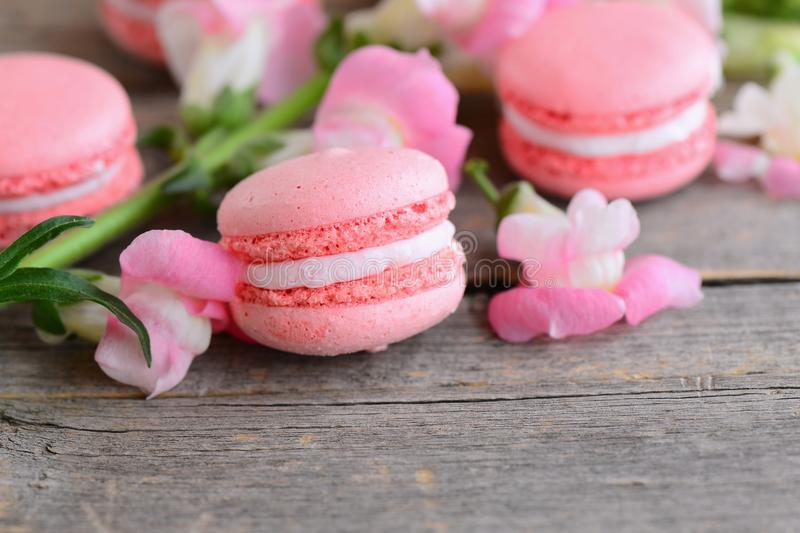 Popular French cakes macarons. Light pink macarons and flowers on a vintage wooden background with copy space for text. royalty free stock image