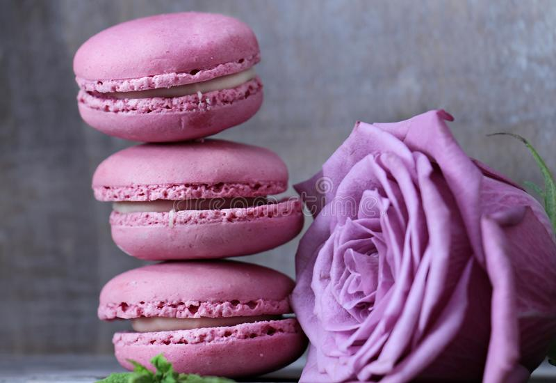 Macaroon, Pink, Sweetness, Buttercream Free Public Domain Cc0 Image