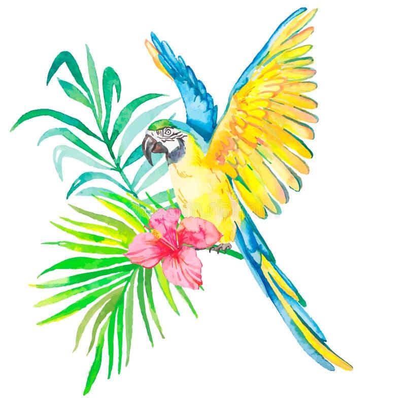 Macaw που απομονώνεται στο άσπρο υπόβαθρο Φύλλα φοινικών απεικόνιση αποθεμάτων
