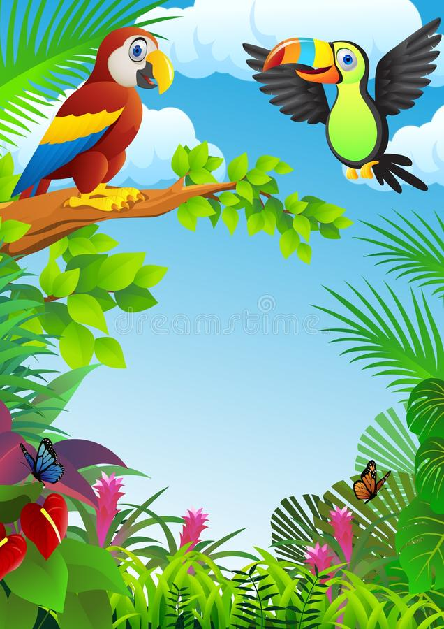 Macaw Bird Stock Image