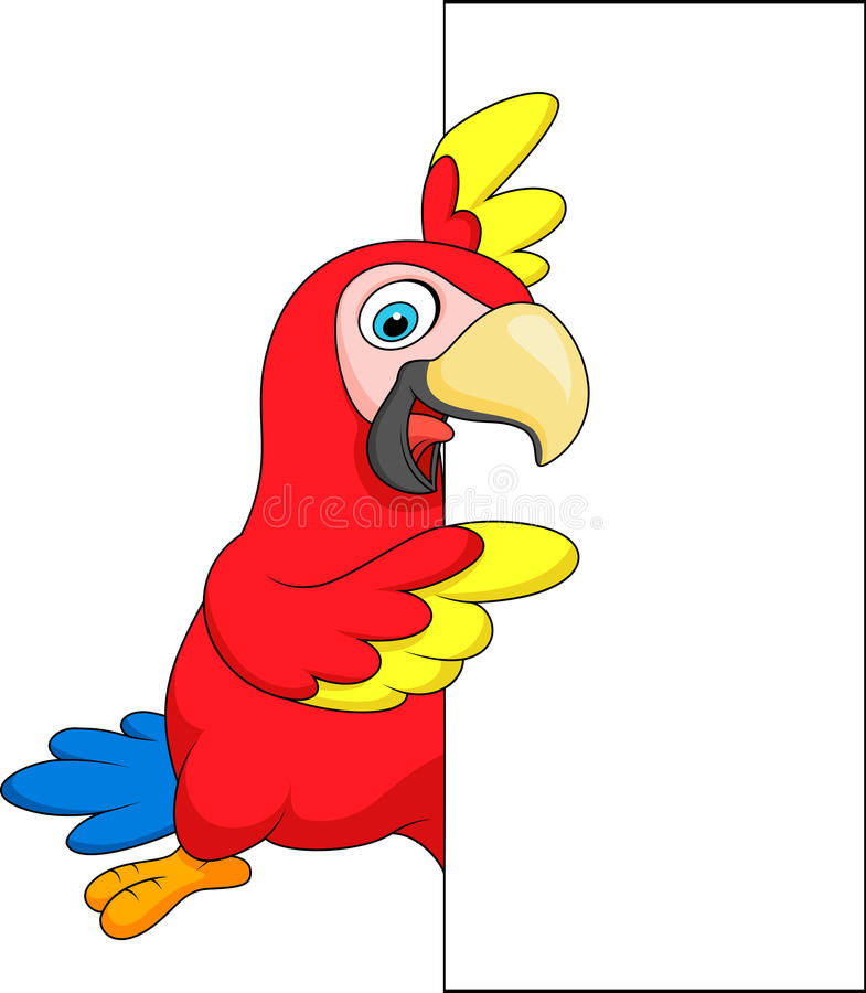 Macaw bird cartoon with blank sign stock illustration