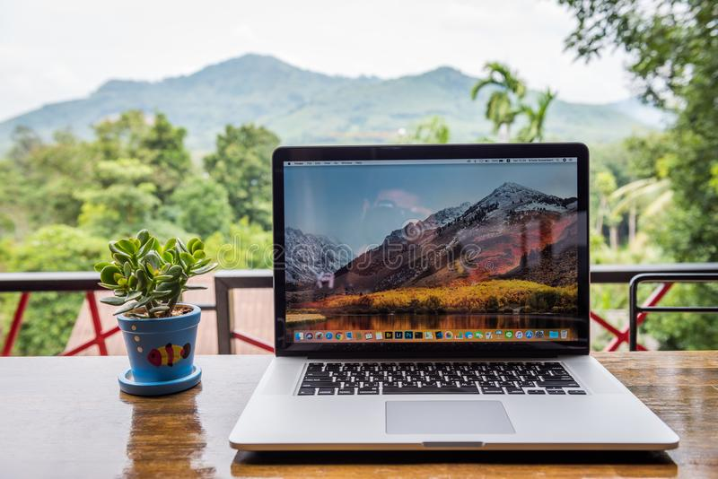 Macbook pro-dator med blommavasen fotografering för bildbyråer