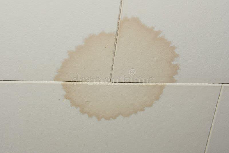 Macchia sul soffitto dalla perdita dell'acqua fotografia stock libera da diritti