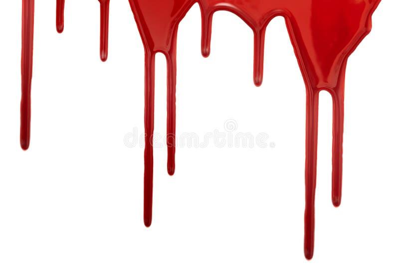Macchie di sangue isolate su un fondo bianco immagine stock libera da diritti